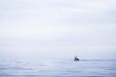 """""""A la mar"""""""